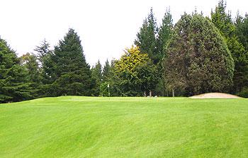napier golf course