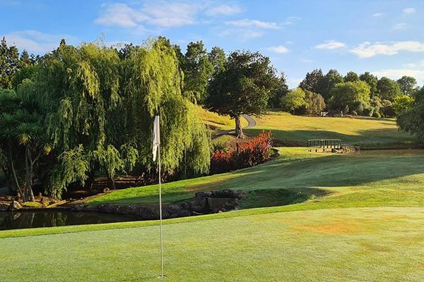 twighlight golf